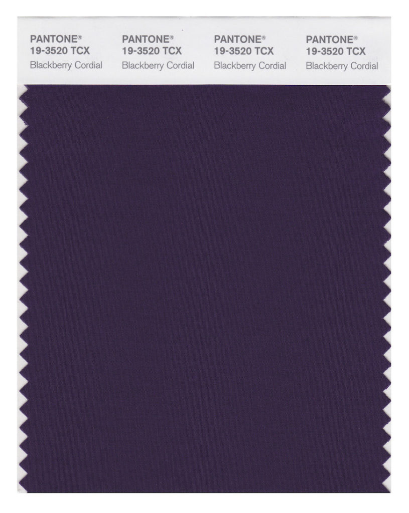 Pantone Color 19-3520 Blackberry Cordial